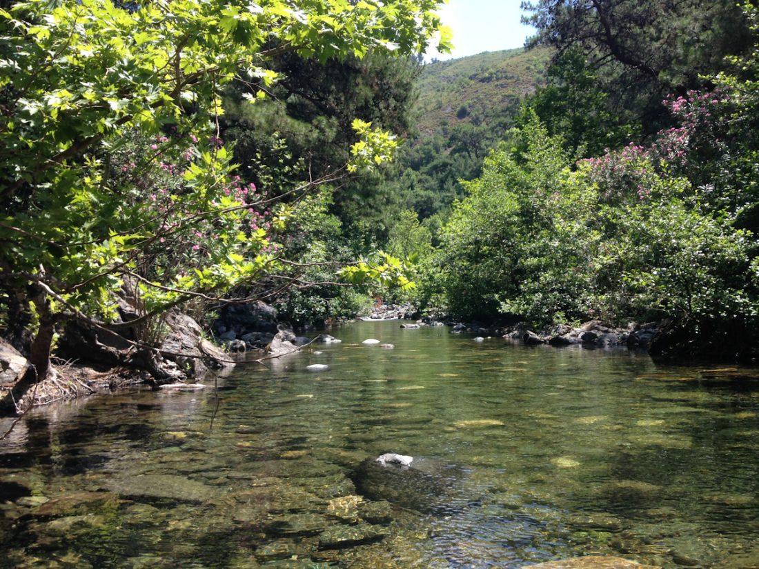 Mehmetalan Köyü - Zeytinli Deresi